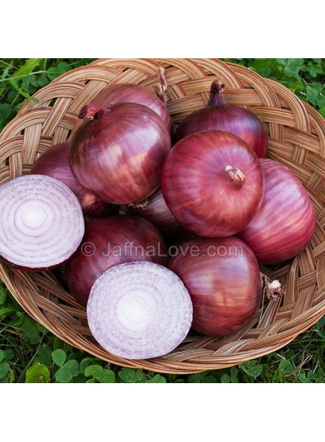 Onion - 1KG